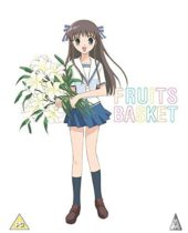 Fruits Basket Collector's Edition Review
