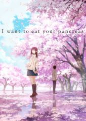UPDATED: I Want to Eat Your Pancreas Joins Irelands' Japanese Film Festival Next Month