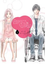 Perfect World Volume 1 Review